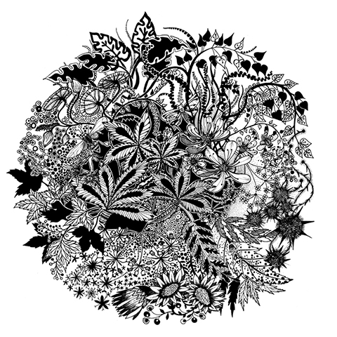 «Волшебный сад» — графический мир шотландской художницы и ...